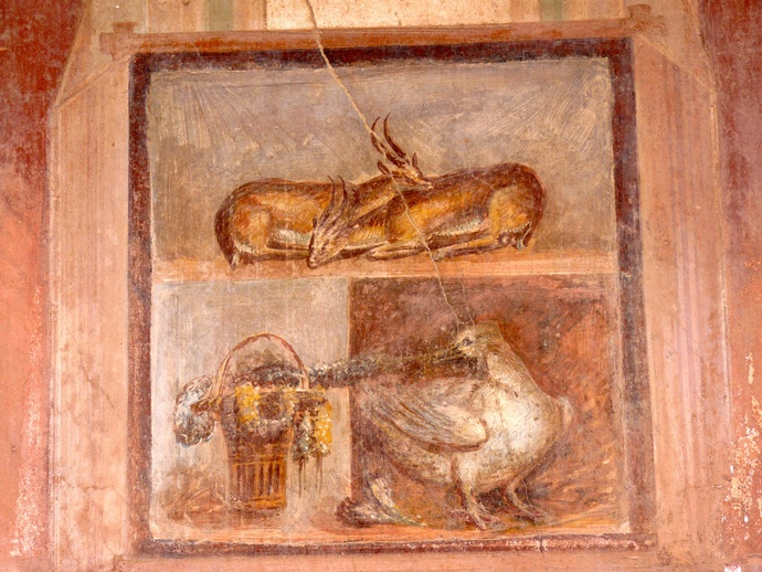Casa Dei Dioscuri Antelopes and Still Life in Situ North Wall