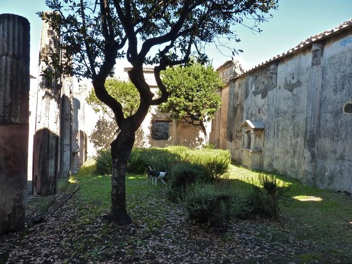 Casa Dei Dioscursi 7