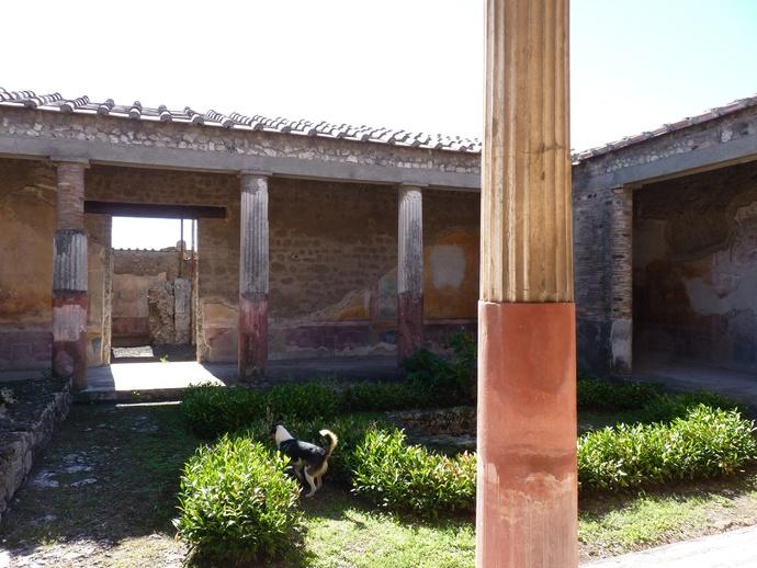 Casa Dei Dioscursi