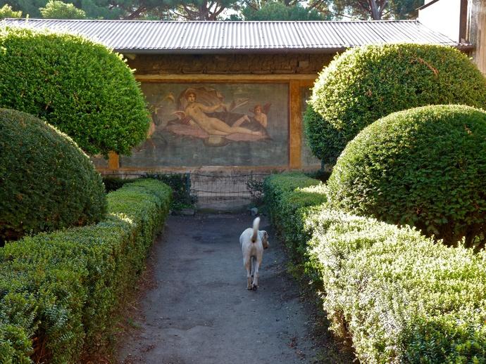 Casa di Venere & Dog