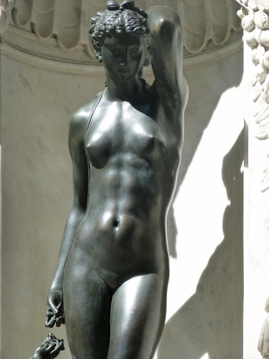 Venus Benvenuto Cellini
