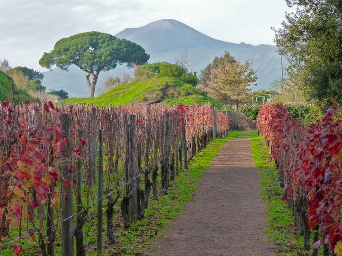 Vesuvius View from Pompeii 2