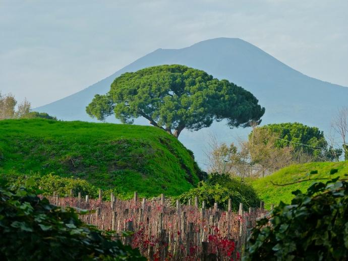 Vesuvius View from Pompeii