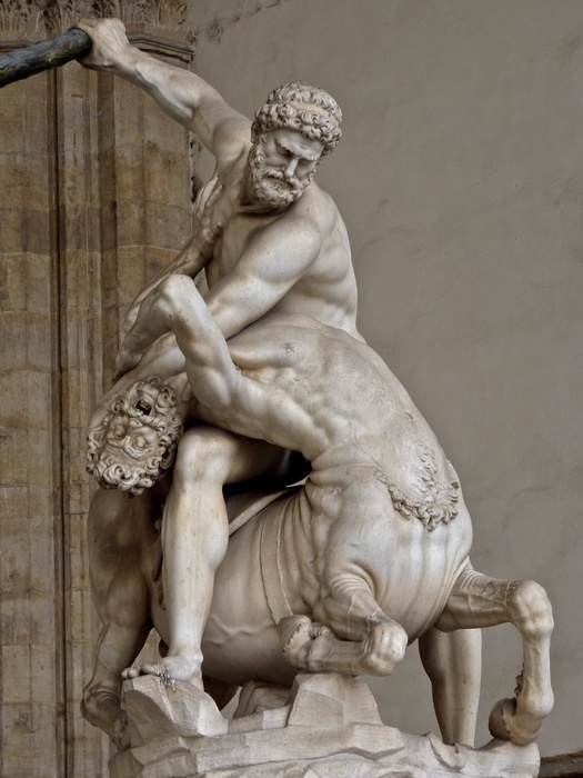 Giambologna\\\'s Hercules & the Centaur Nessus (1599) 6