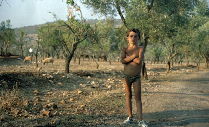 Albanian Shepherd Boy