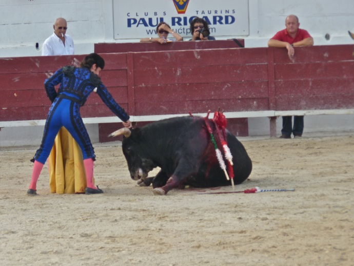 Andy Cartagena\\\'s Bull Fallen 2