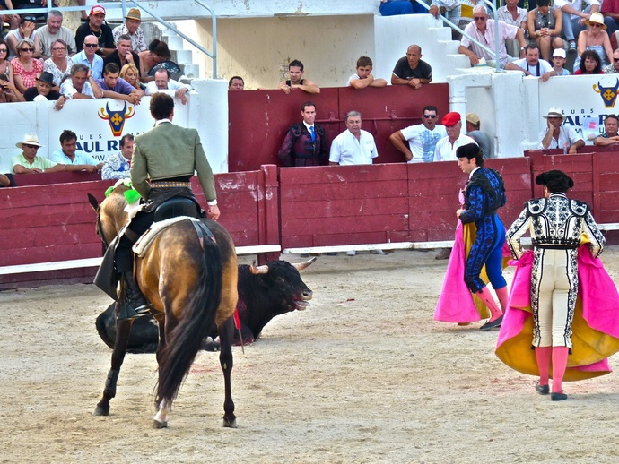 Andy Cartagena\\\'s Bull Falls Again 2