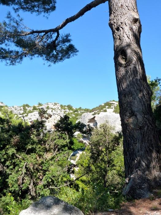 Les Alpilles 4
