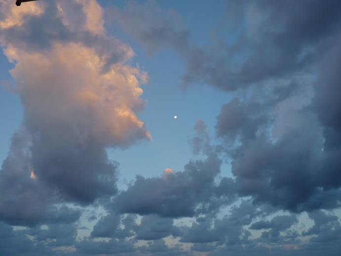 Morning Moon s Maria Castellabate 5