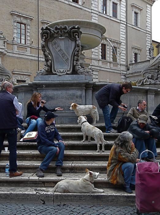 Piazza Santa Maria in Trastevere 3