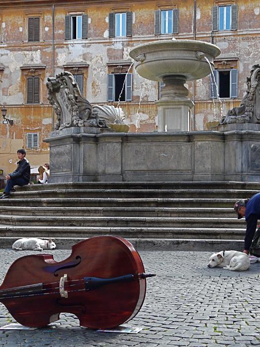 Piazza Santa Maria in Trastevere 7