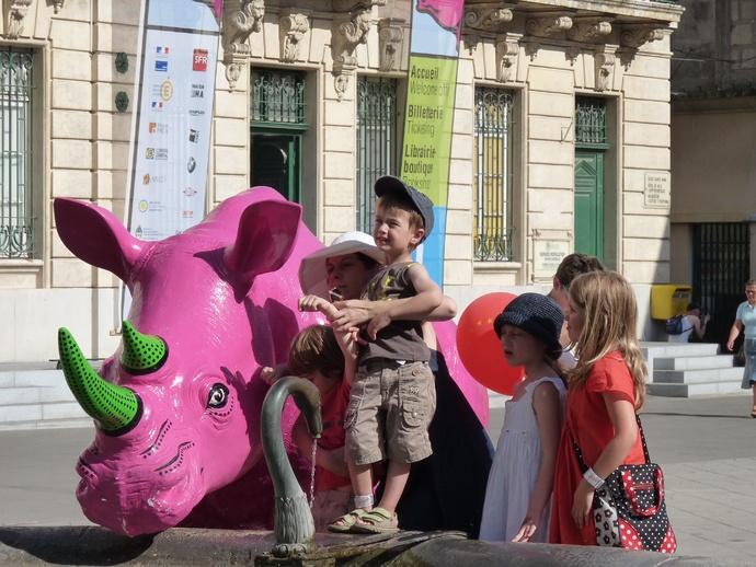 Pink Rhino Arles 4