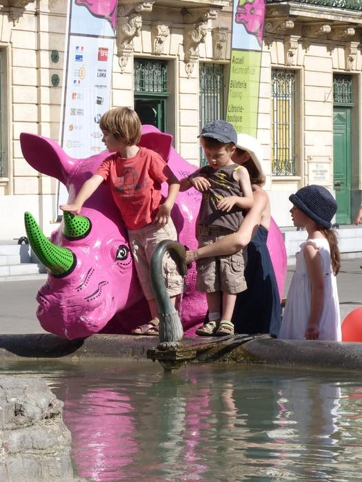 Pink Rhino Arles 5