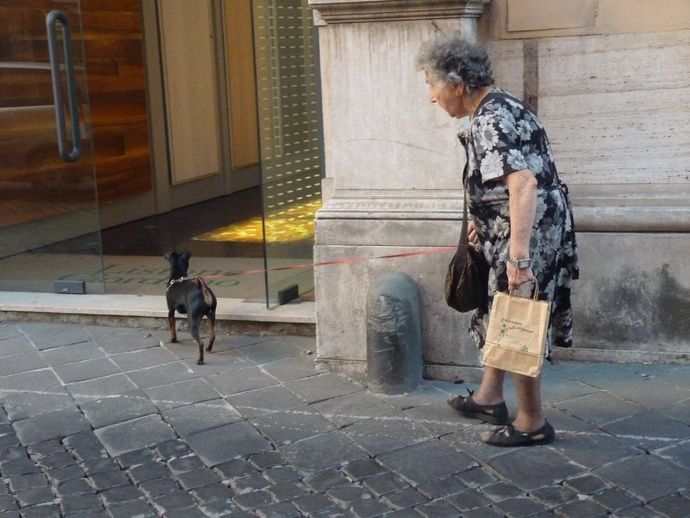 Roma in Summer 15