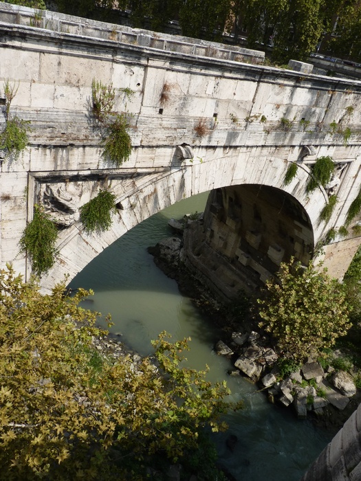Roma in Summer 26