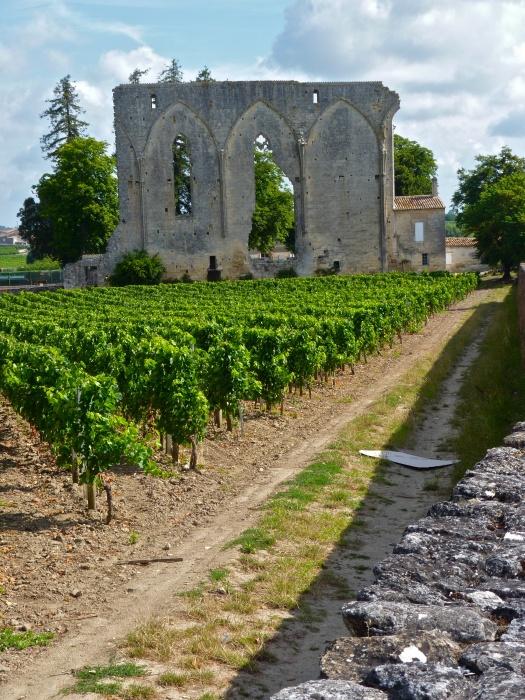Saint Emilion 5