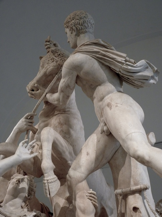 The Farnese Bull 2