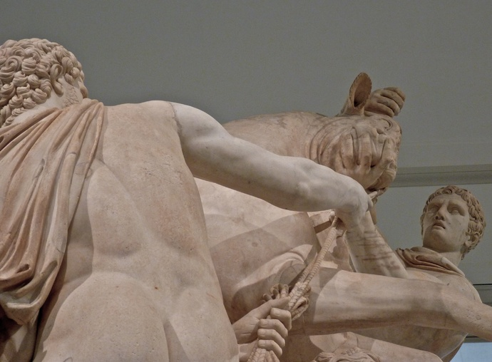 The Farnese Bull 7