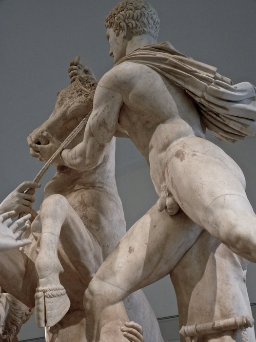 The Farnese Bull Amphion 3