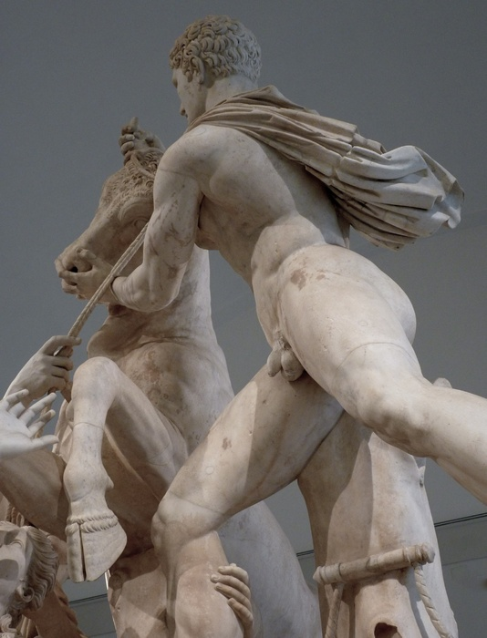 The Farnese Bull Amphion 4