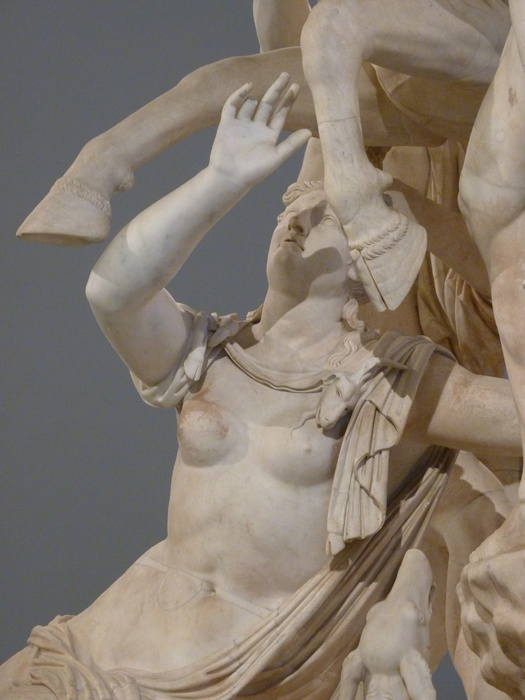 The Farnese Bull Dirce 6