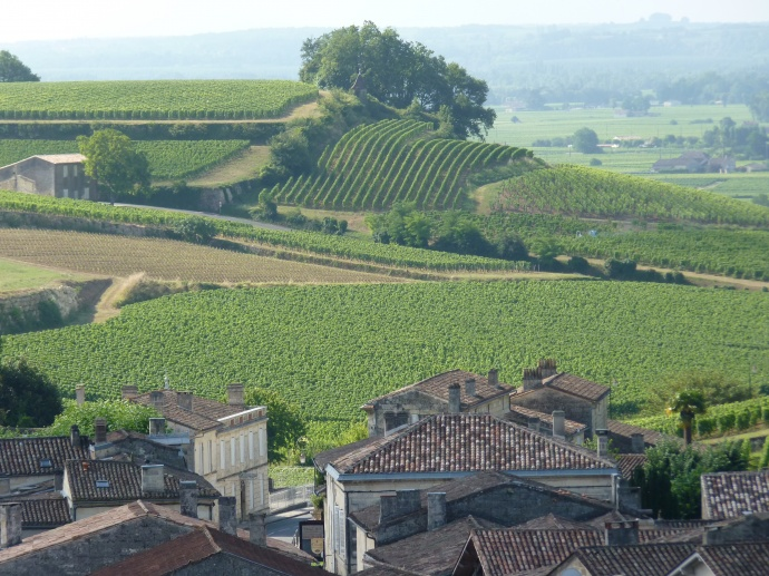 View from Saint Emilion