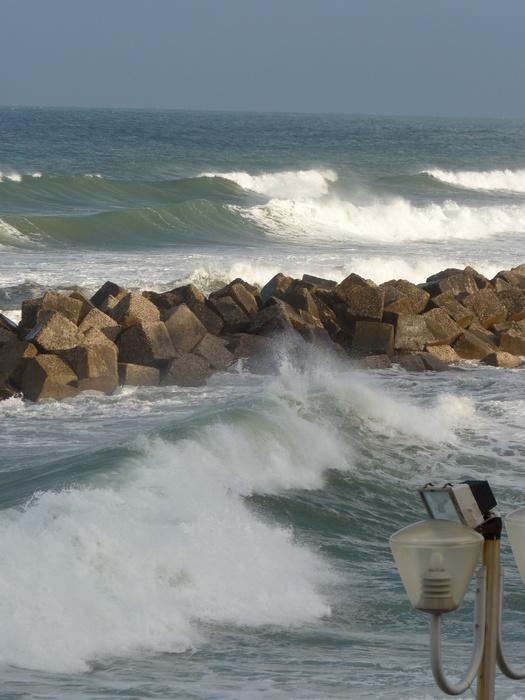 Wild Tyrrhenian Sea 2