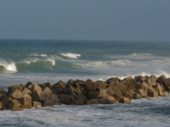 Wild Tyrrhenian Sea 3