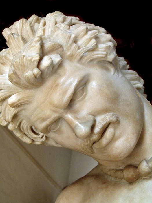 The Dying Gaul 2