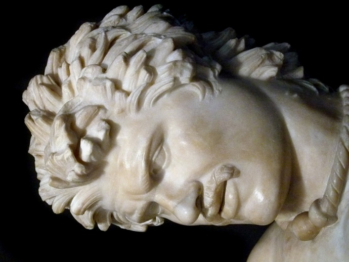 The Dying Gaul 6
