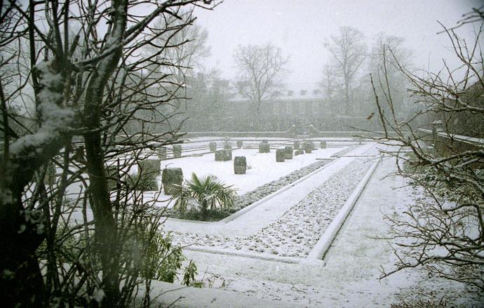 Dutch Garden 2