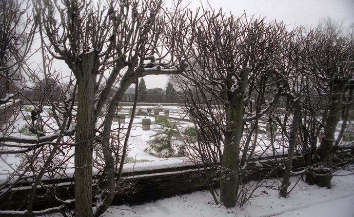 Dutch Garden 9