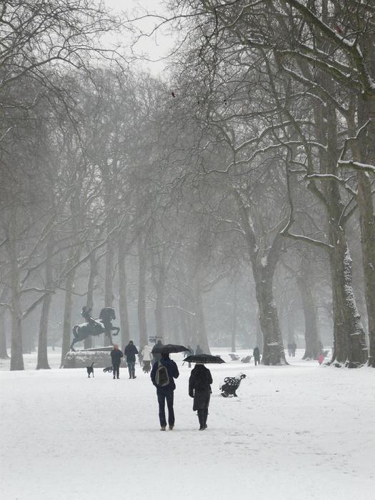 Kensington Gardens 15