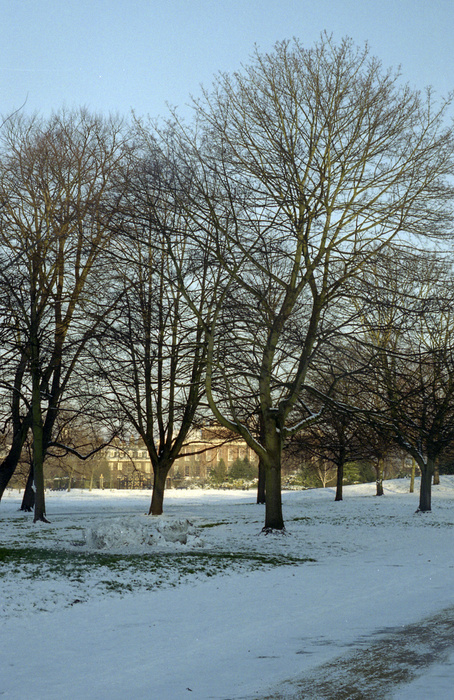 Kensington Gardens 7