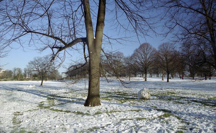 Kensington Gardens 9
