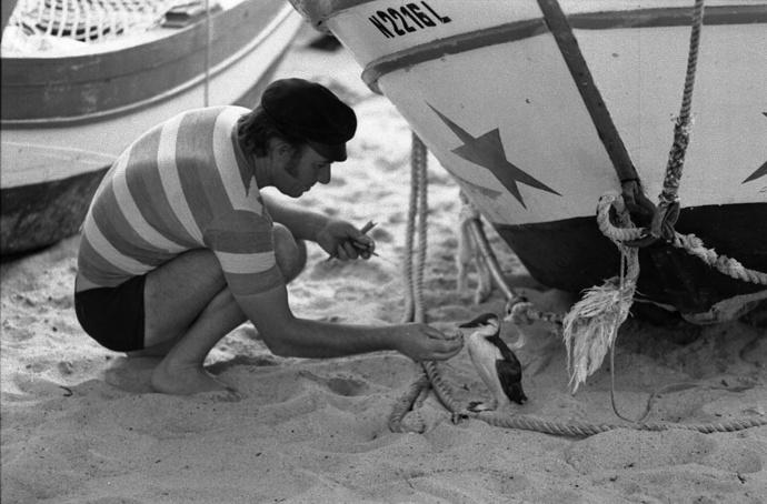 Fisherman & Albatros