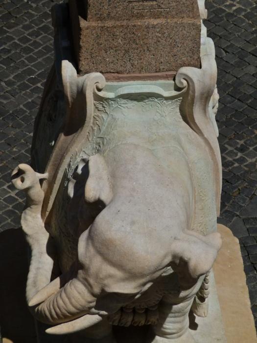 L'elefantino di Bernini 16