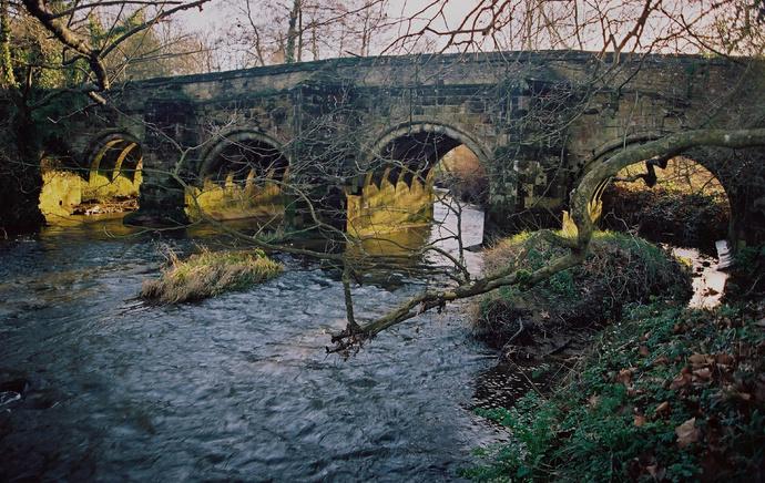 Trotten Bridge 2